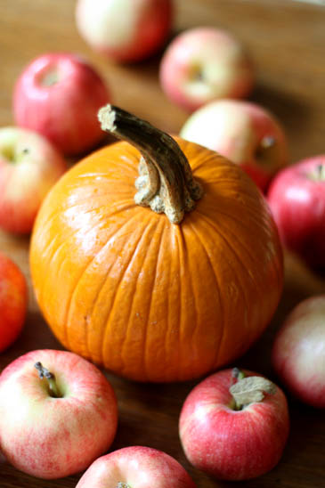 http://zoebakes.com/wp-content/uploads/2008/09/apple-pumpkin-cake01.jpg