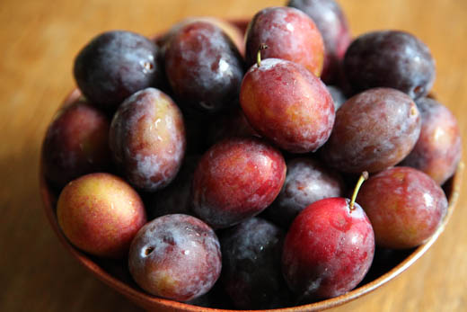 Sugar Plums Recipe — Dishmaps