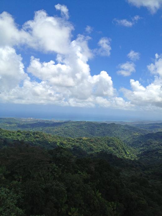 Puerto Rico | ZoeBakes