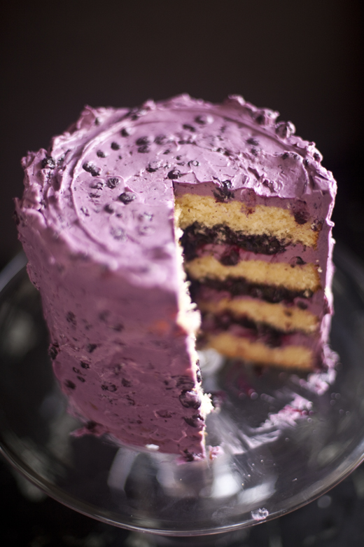 blueberry cake zb 10